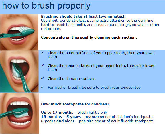 How to brush your teeth according to th ADA from Hooper Tooth Conserving Dentistry in Rose Bay, Sydney